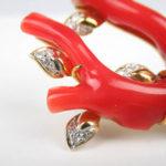 血赤珊瑚のイメージ画像