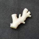白珊瑚のイメージ画像