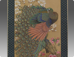 岡本秋暉花鳥画牡丹孔雀